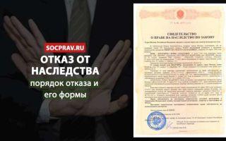 Отказ от наследства после 6 месяцев — сроки, заявления, документы для суда, порядок отказа