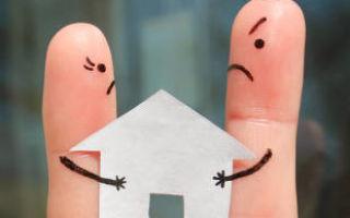Добрачное имущество перемешалось с брачным — раздел при разводе добровольно и через суд, как оценить