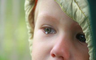 Уклонение родителя от исполнения родительских обязанностей — как доказать, последствия, куда обращаться