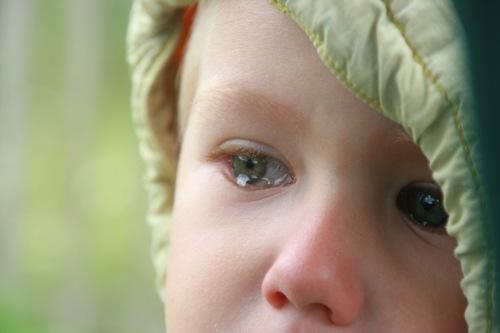 Уклонение родителя от исполнения родительских обязанностей - как доказать, последствия, куда обращаться