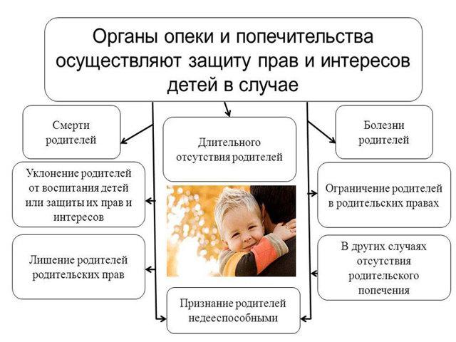 Права и обязанности родителя, которого лишили родительских прав